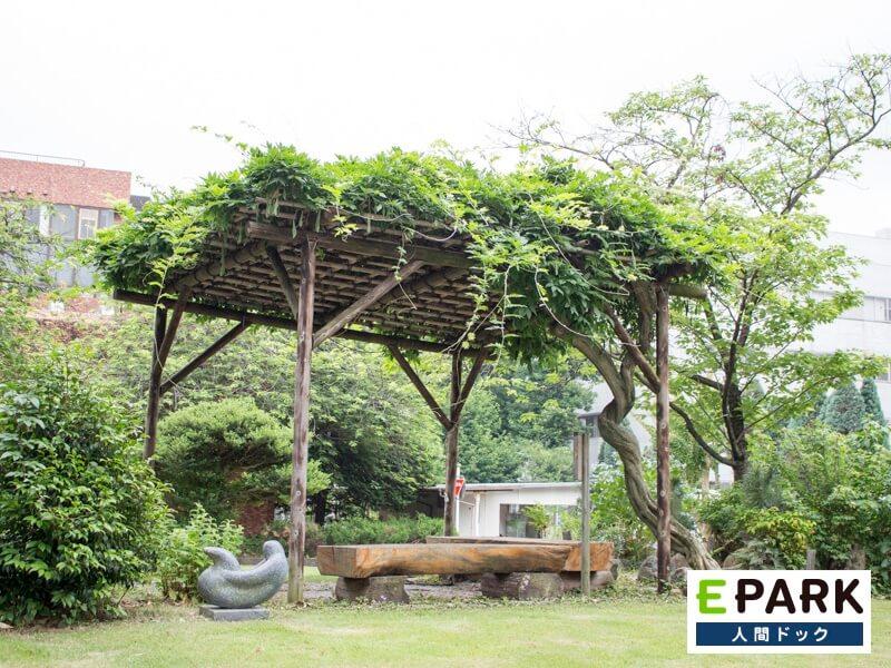 緑豊かな庭で、体の緊張をほぐしながら検査を受けることができます。