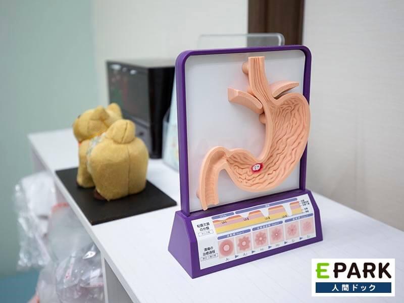 早期胃がんの発見にも有用な胃カメラ